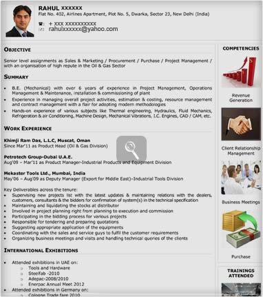 Visual Cv Samples Visual Sample Cv Naukrigulf Com