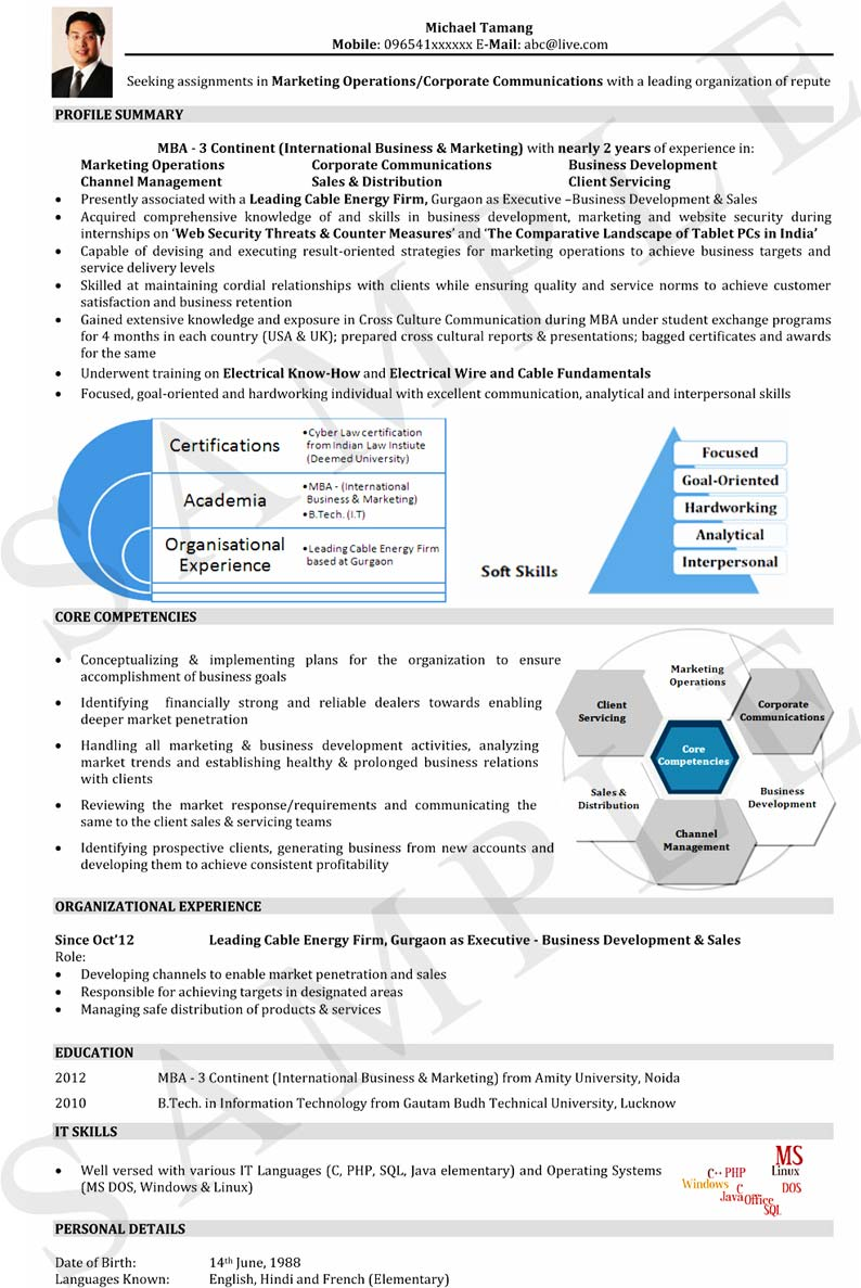 visual resume format for freshers and experienced