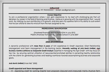 Sample Cv For Dot Net Developer Dental Vantage Dinh Vo Dds