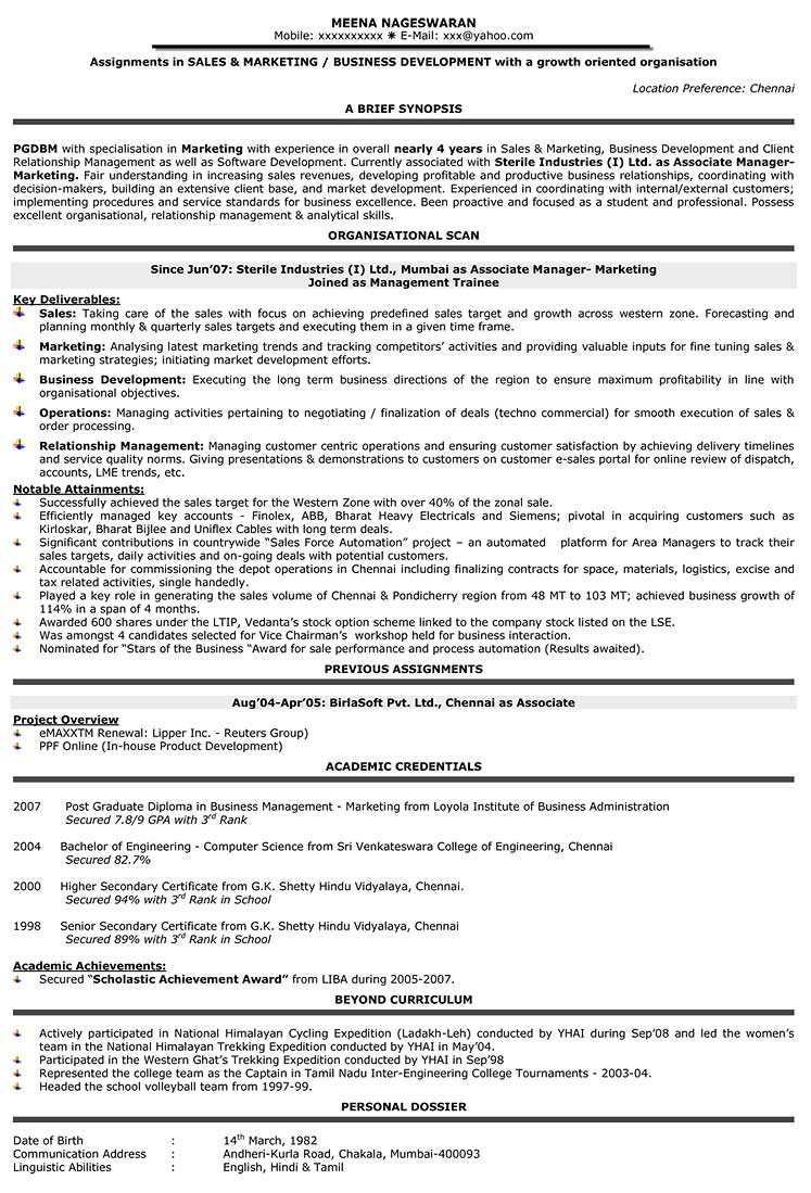 cv format for business development