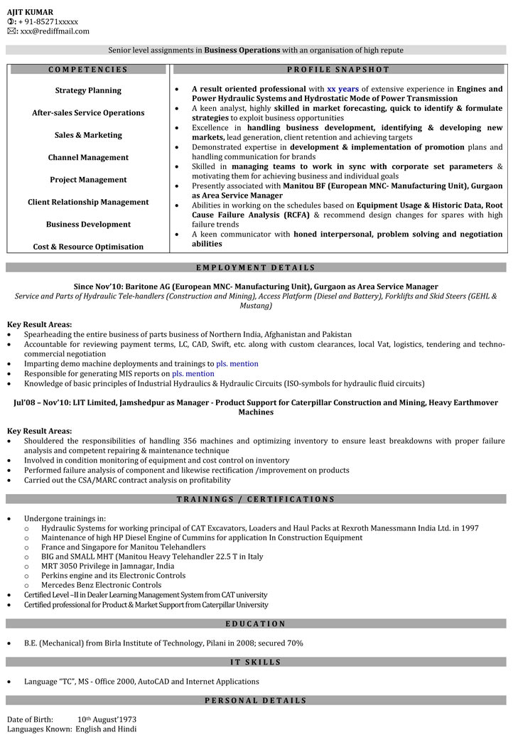 curriculum vitae for sales manager
