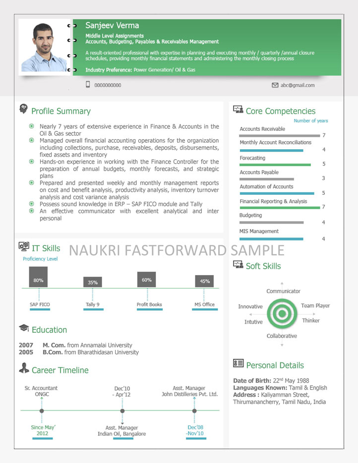 download visual resume samples - Visual Resume